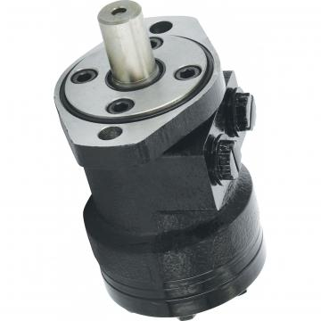 Flowfit Hydraulique Moteurs FFPM100 Séries 100 Cc / Rev