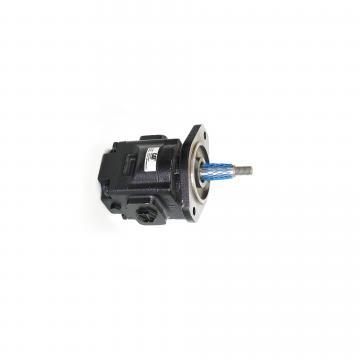 20/925732 JCB Triple pompe hydraulique neuf authentique objet