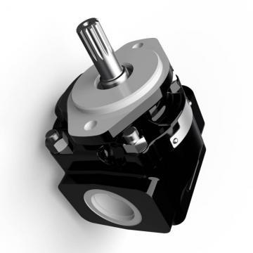 Genuine PARKER/JCB 214 Twin pompe hydraulique 20/925337 MADE in EU
