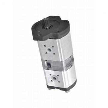 Hydraulique pompe à engrenages BOSCH REXROTH 0 510 665 389