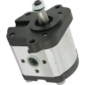 Hydraulique pompe à engrenages BOSCH REXROTH 0 510 665 381
