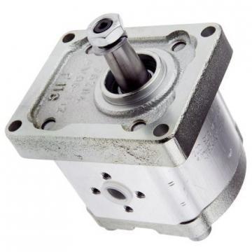 Hydraulique pompe à engrenages BOSCH REXROTH 0 510 765 347