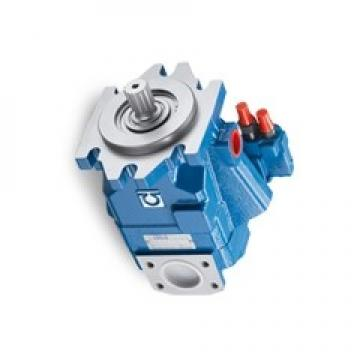 KPM Kawasaki Axial Piston Pump KVL80/B-1BLKS-L0