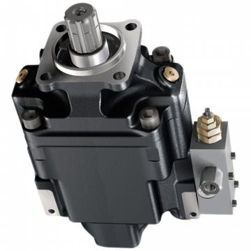 Pompe hydraulique à pied doubles pistons